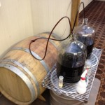 Stout ready to occupy the newly acquired cabernet barrel